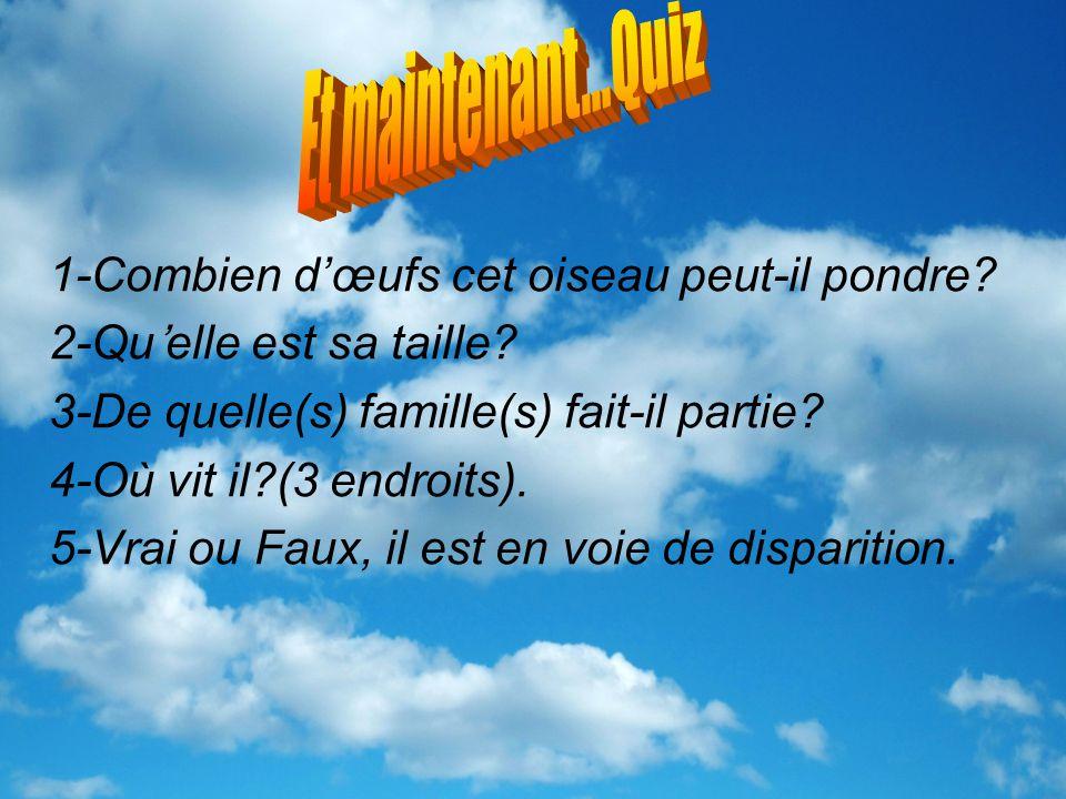Bibliographie La sturnelle des prés http://www.lemerlebleu.com/chronique/sturnelle-des-pres.htm