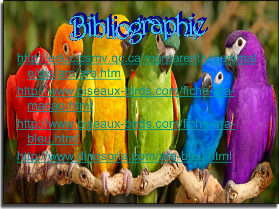 http://educ.csmv.qc.ca/mgrparent/vieanimal e/ois/ara/ara.htm http://www.oiseaux-birds.com/fiche-ara- macao.html http://www.oiseaux-birds.com/fiche-ara- bleu.html http://www.dinosoria.com/ara-bleu.html