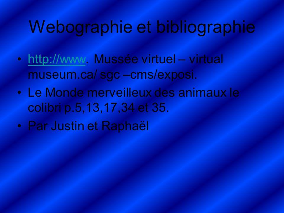 Webographie et bibliographie http://www.Mussée virtuel – virtual museum.ca/ sgc –cms/exposi.