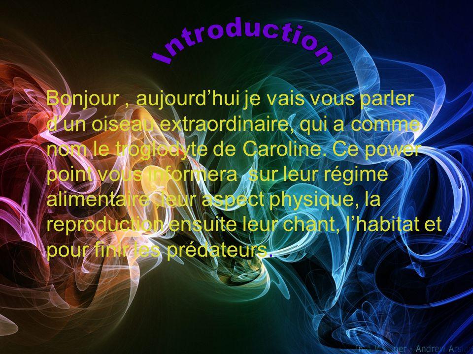 Introduction Régime alimentaire Aspect physique Reproduction Le chant Habitat Prédateurs Conclusion Résumé Bibliographie
