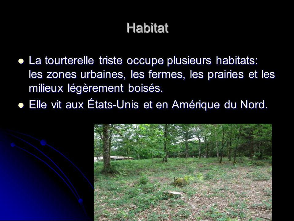 Habitat La tourterelle triste occupe plusieurs habitats: les zones urbaines, les fermes, les prairies et les milieux légèrement boisés. La tourterelle