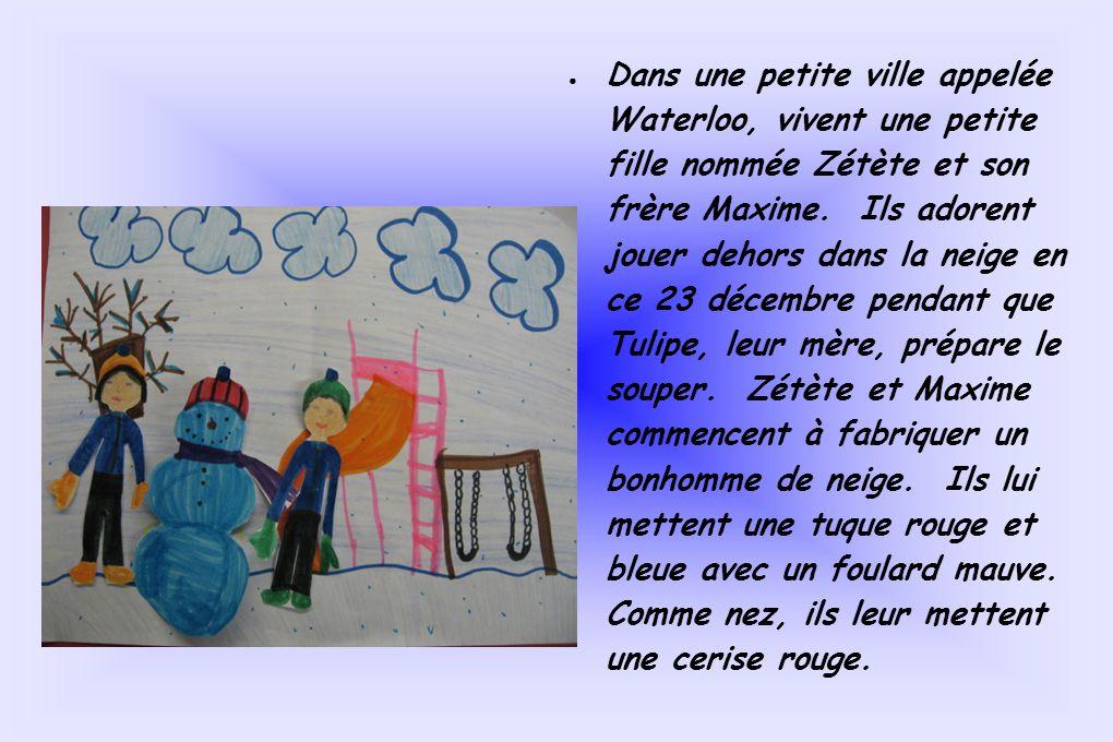 Dans une petite ville appelée Waterloo, vivent une petite fille nommée Zétète et son frère Maxime. Ils adorent jouer dehors dans la neige en ce 23 déc