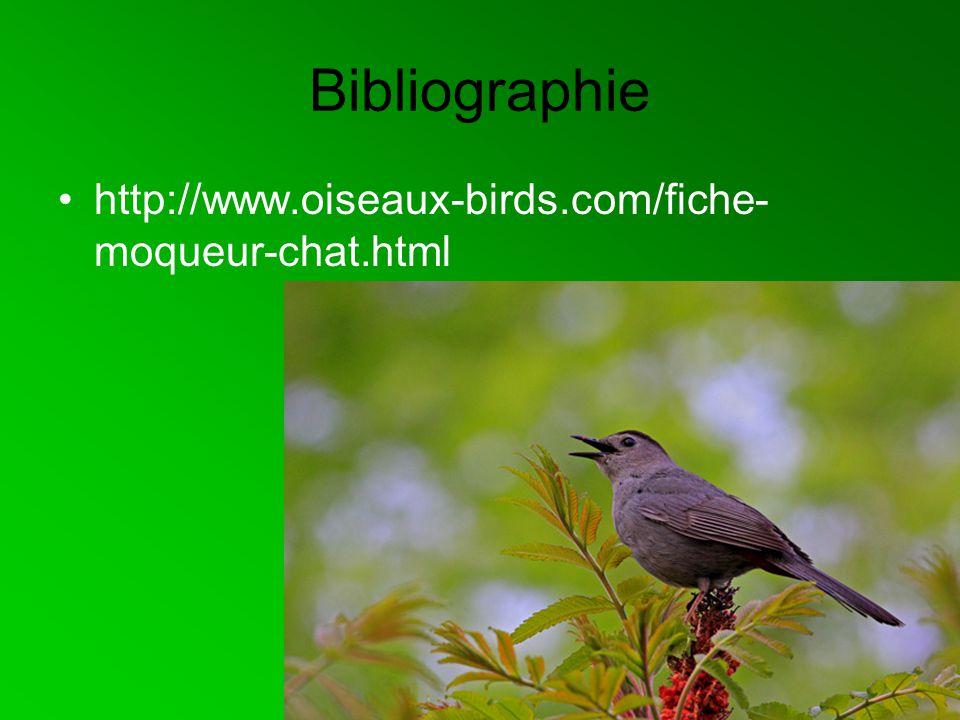 Bibliographie http://www.oiseaux-birds.com/fiche- moqueur-chat.html