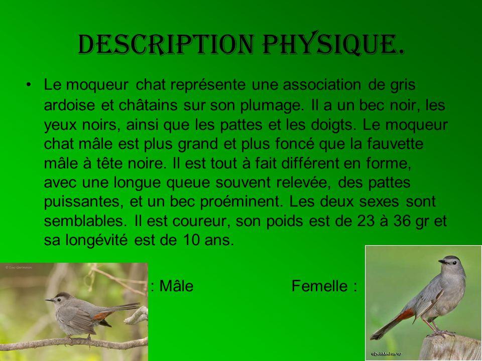 Information pertinente - La femelle dépose 1 à 6 œufs de couleur turquoise - Il se nourrit essentiellement dinsectes .