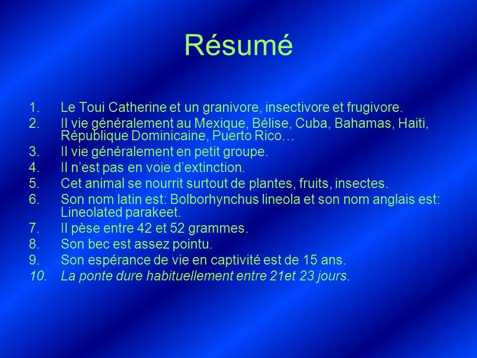 Résumé 1.Le Toui Catherine et un granivore, insectivore et frugivore. 2.Il vie généralement au Mexique, Bélise, Cuba, Bahamas, Haiti, République Domin