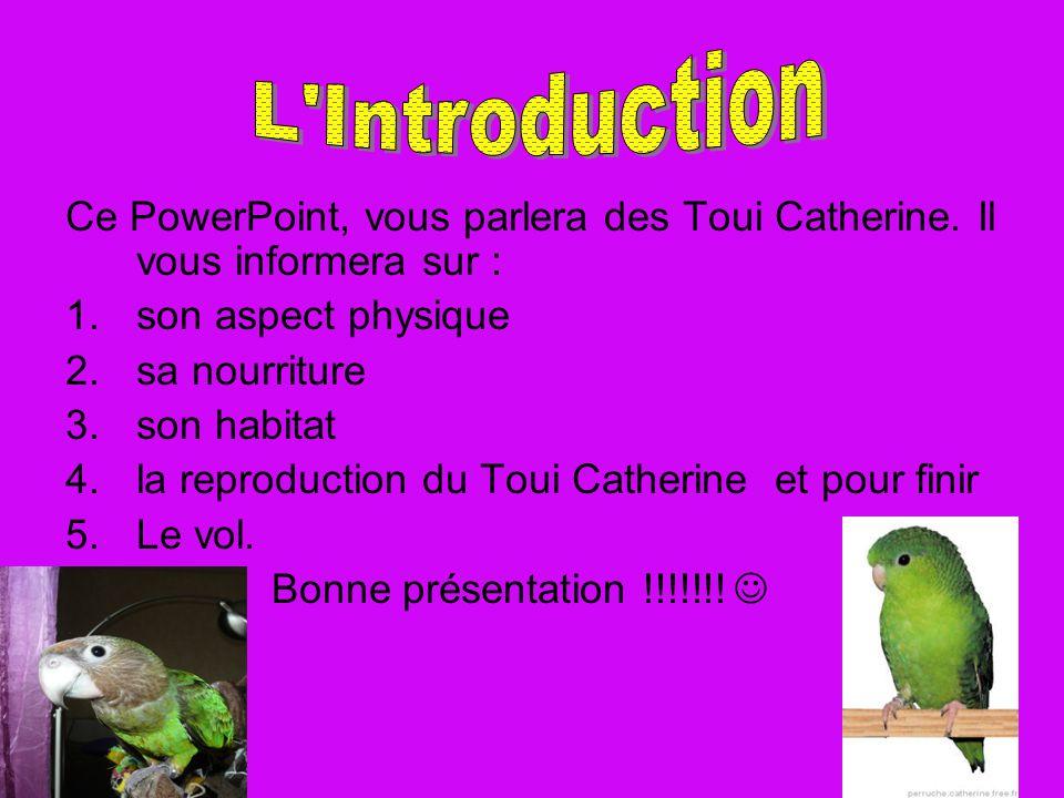 Ce PowerPoint, vous parlera des Toui Catherine. Il vous informera sur : 1.son aspect physique 2.sa nourriture 3.son habitat 4.la reproduction du Toui