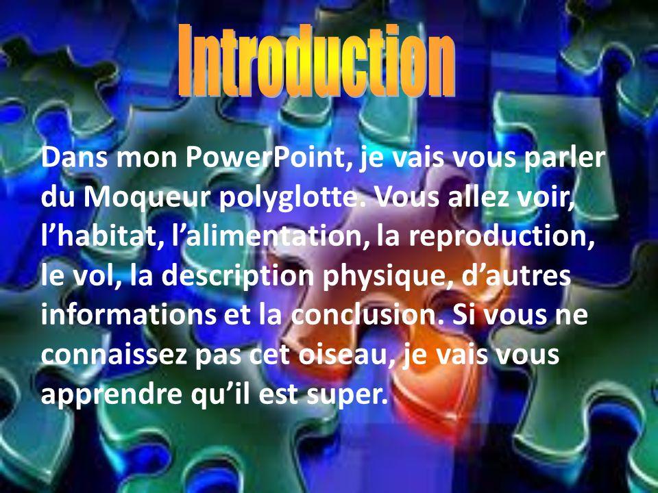 Dans mon PowerPoint, je vais vous parler du Moqueur polyglotte. Vous allez voir, lhabitat, lalimentation, la reproduction, le vol, la description phys