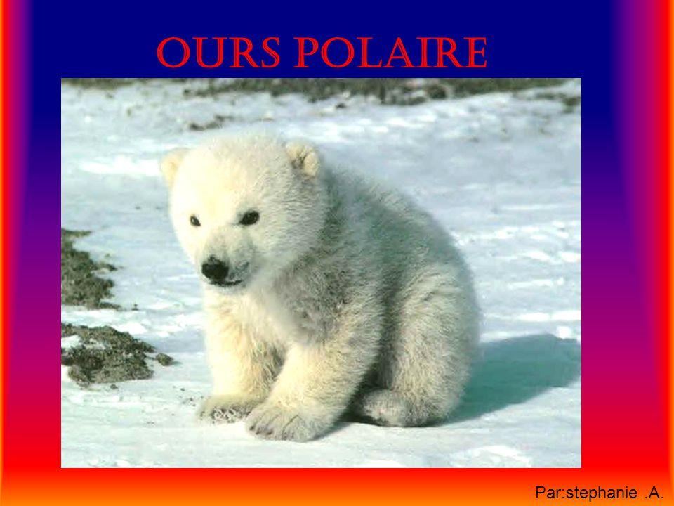 Habitat On le retrouve autour du pôle nord, du Groenland, des Régions plus au sud de lAmérique du nord et de lAsie.