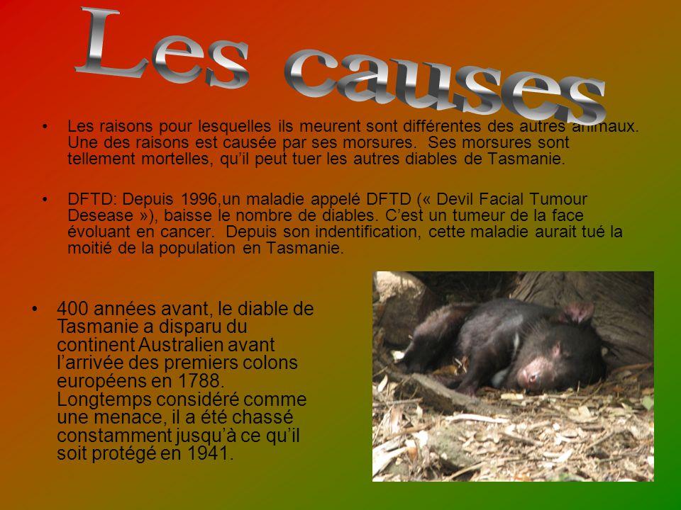 Les raisons pour lesquelles ils meurent sont différentes des autres animaux.