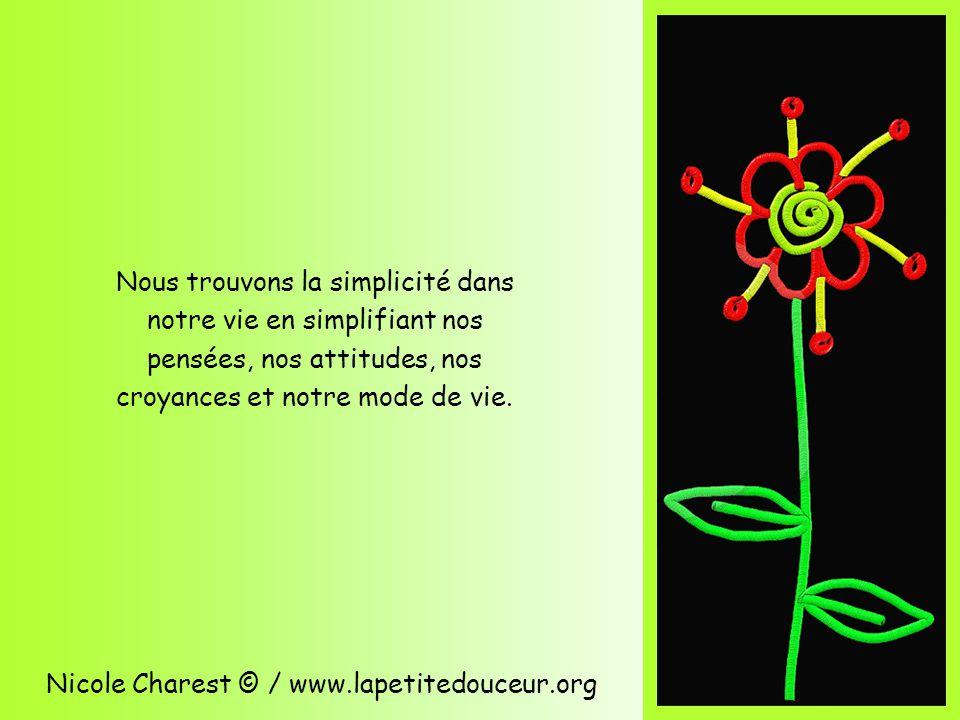 Nicole Charest © / www.lapetitedouceur.org Nous trouvons la simplicité dans notre vie en simplifiant nos pensées, nos attitudes, nos croyances et notre mode de vie.