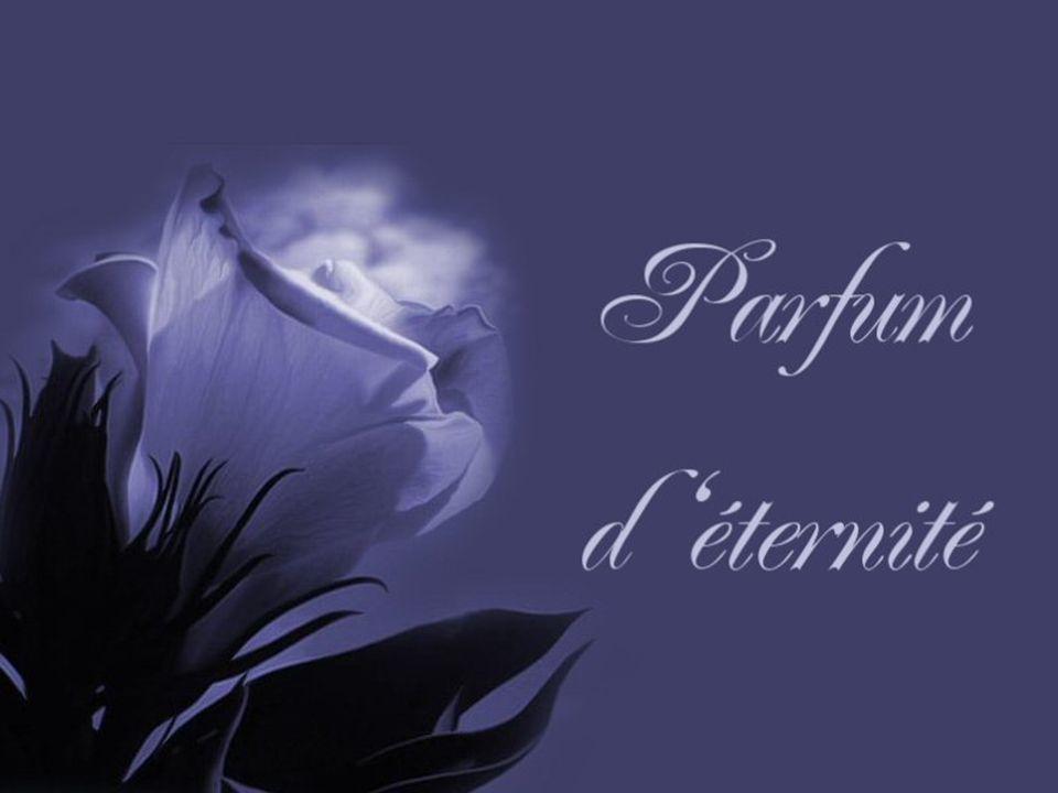 Si vous pouvez, partez à la recherche de votre Parfum d éternité Vous aurez un bonheur si grand que vous aurez envie de le partagez.