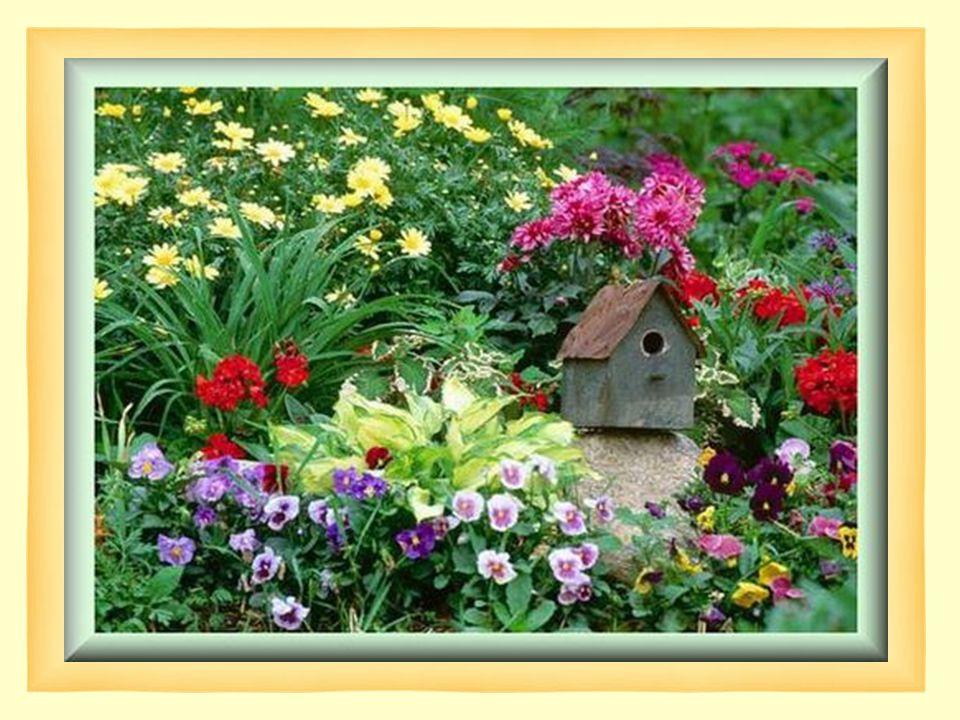 Notre esprit peut-être comparé à un jardin… Ou à chaque instant de notre vie… Nous y faisons une semence et une culture journalière… Nous y ensemençons des graines qui deviendront….