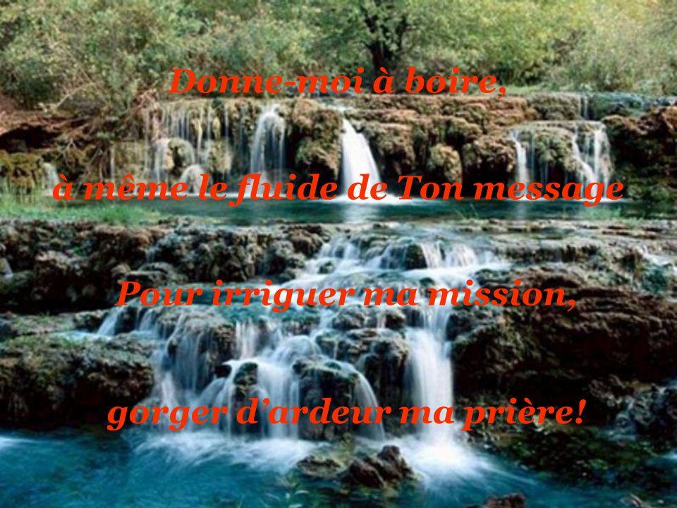 Jai tellement soif … incapable de rendre témoignage; Mon esprit souffre dun cœur retiré au désert…