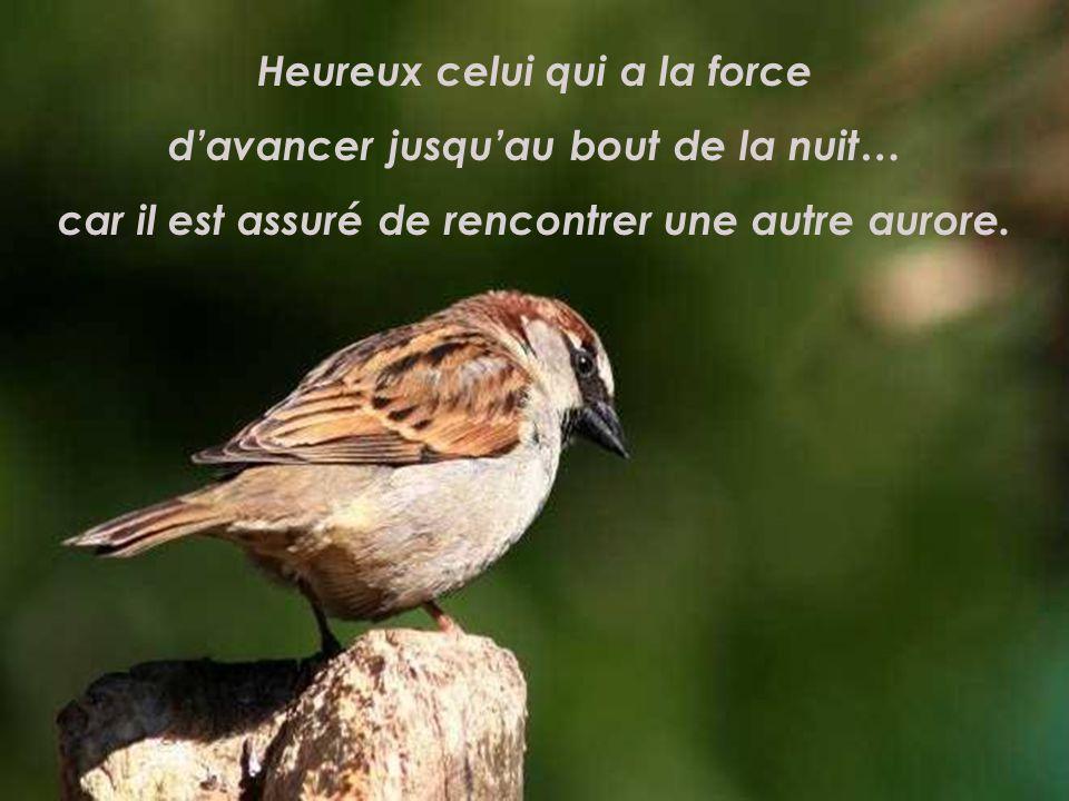 Heureux celui qui sait goûter le bonheur caché dans le moment présent, car le bonheur dhier est passé et celui de demain nest pas encore né.
