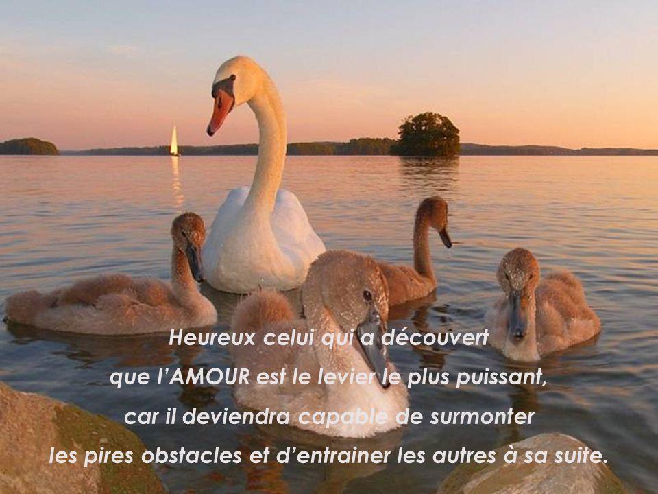 Heureux celui qui donne toujours le MEILLEUR de lui-même, car il naura jamais rien à se reprocher…