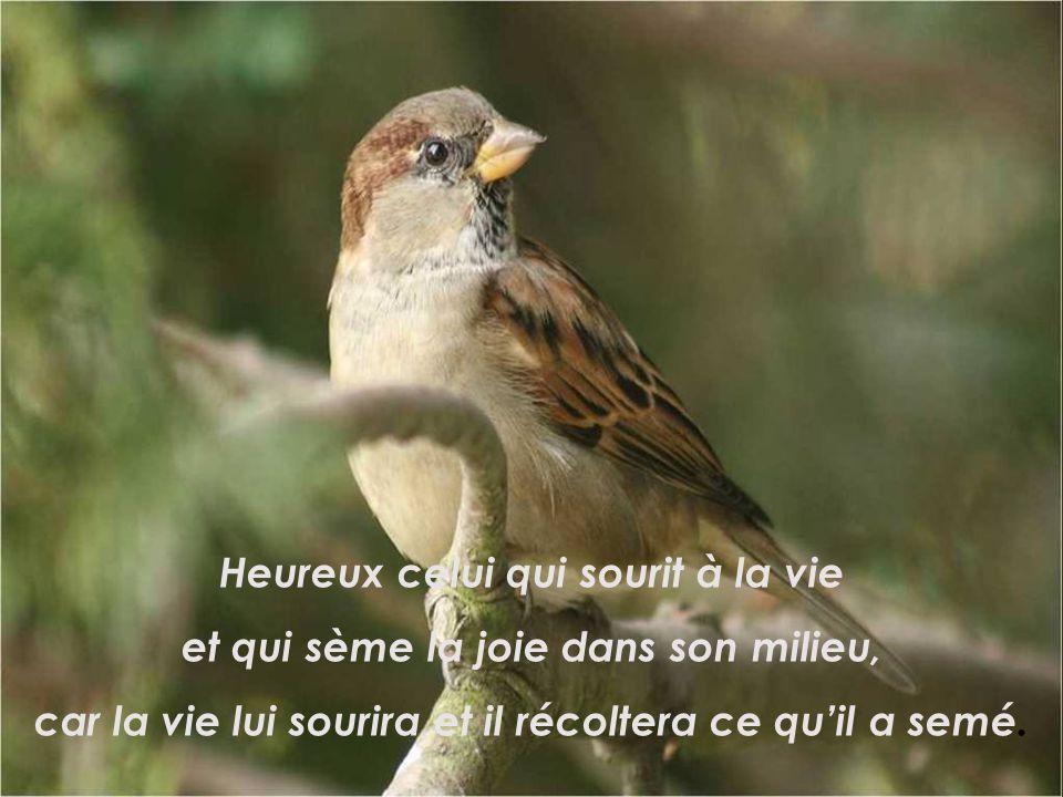 Heureux celui qui sait prendre sa joie dans la joie des autres, car personne na le droit dêtre heureux seul.