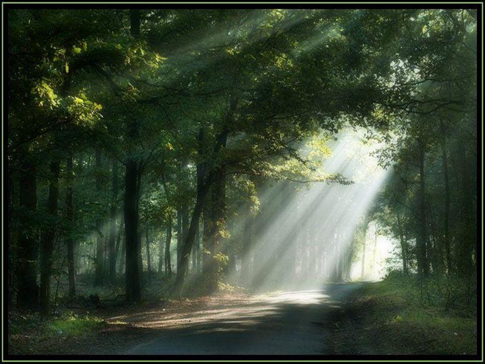 Dieu est le Dieu du présent.