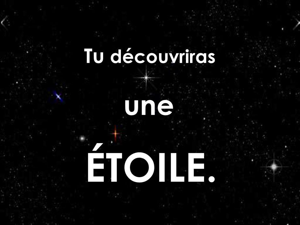 Création Le Ber Yvette ( nov.