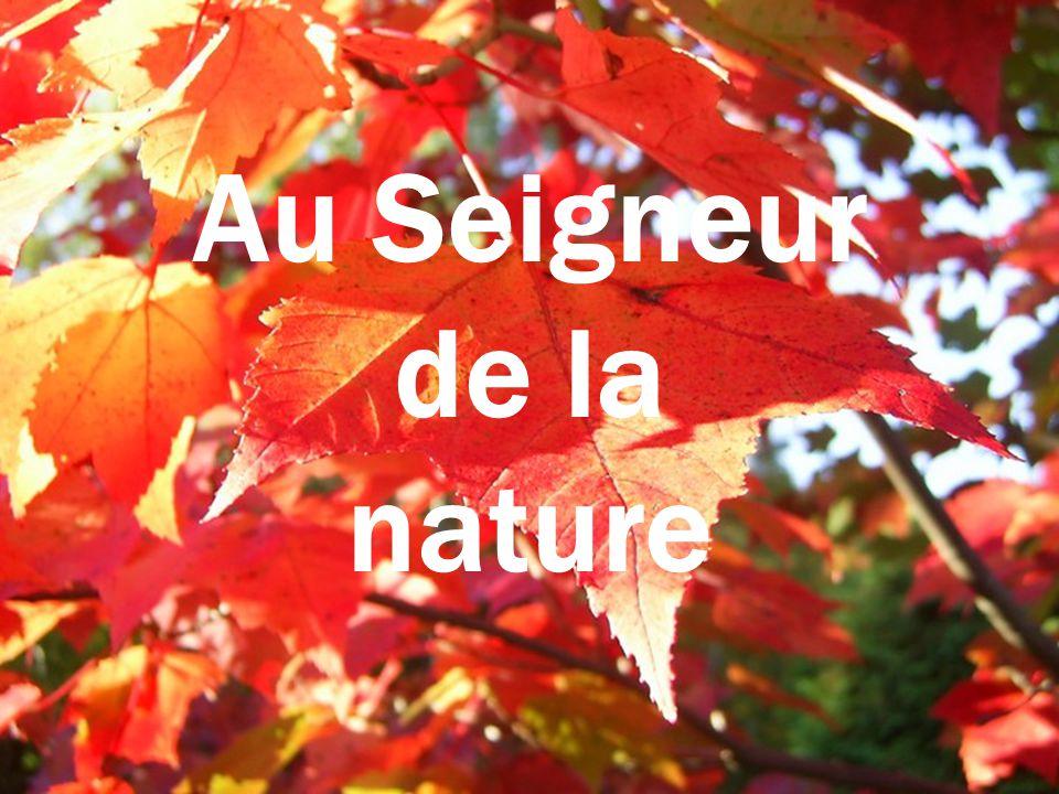 Création Le Ber Yvette octobre 2008 Texte : Jules Beaulac rene202@sympatico.ca Musique : Zamphir