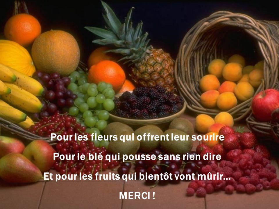 Pour les fleurs qui offrent leur sourire Pour le blé qui pousse sans rien dire Et pour les fruits qui bientôt vont mûrir… MERCI !