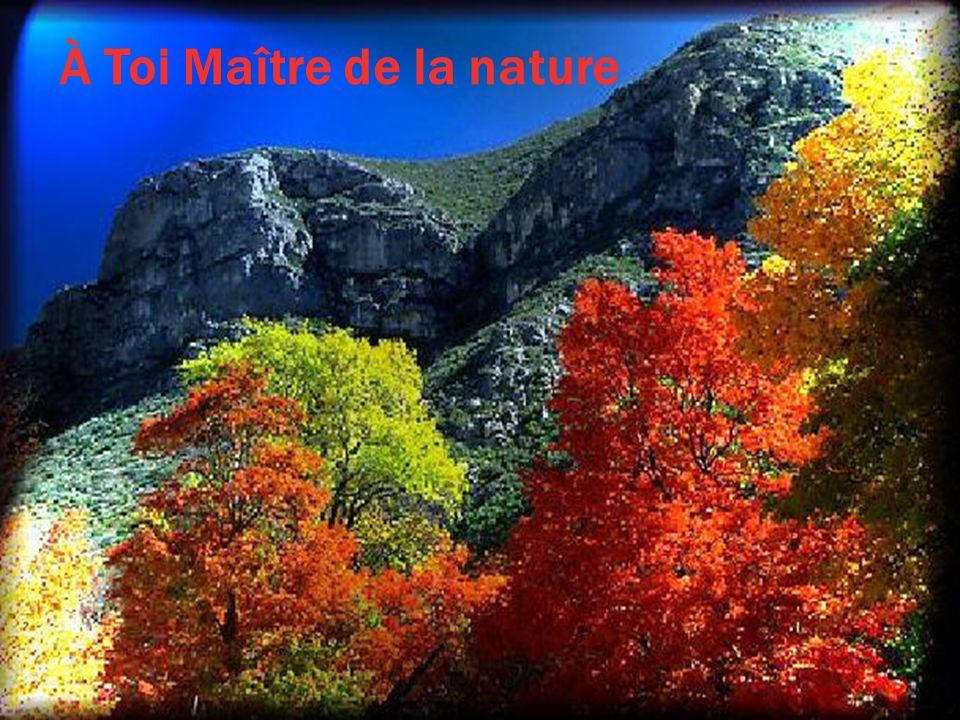 À Toi Maître de la nature