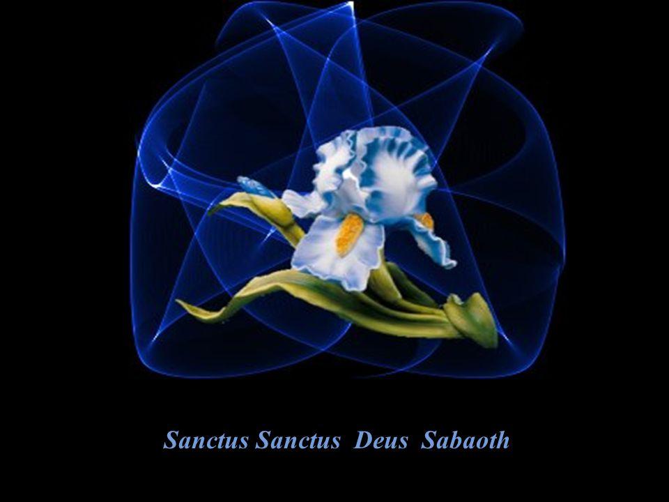 Sanctus Sanctus Deus Sabaoth