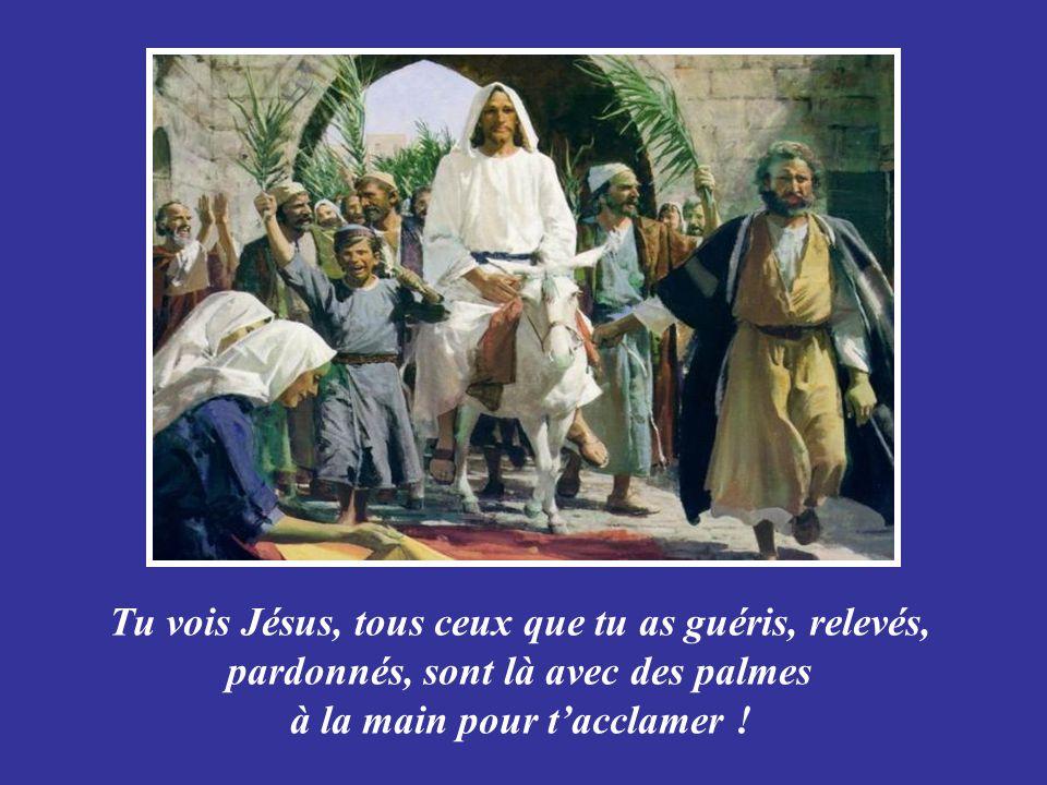 Texte : Angélique, pris sur le site infoinXL5.org Musique : Saint-Preux- Adagio pour violon Création Le Ber rene202@sympatico.ca