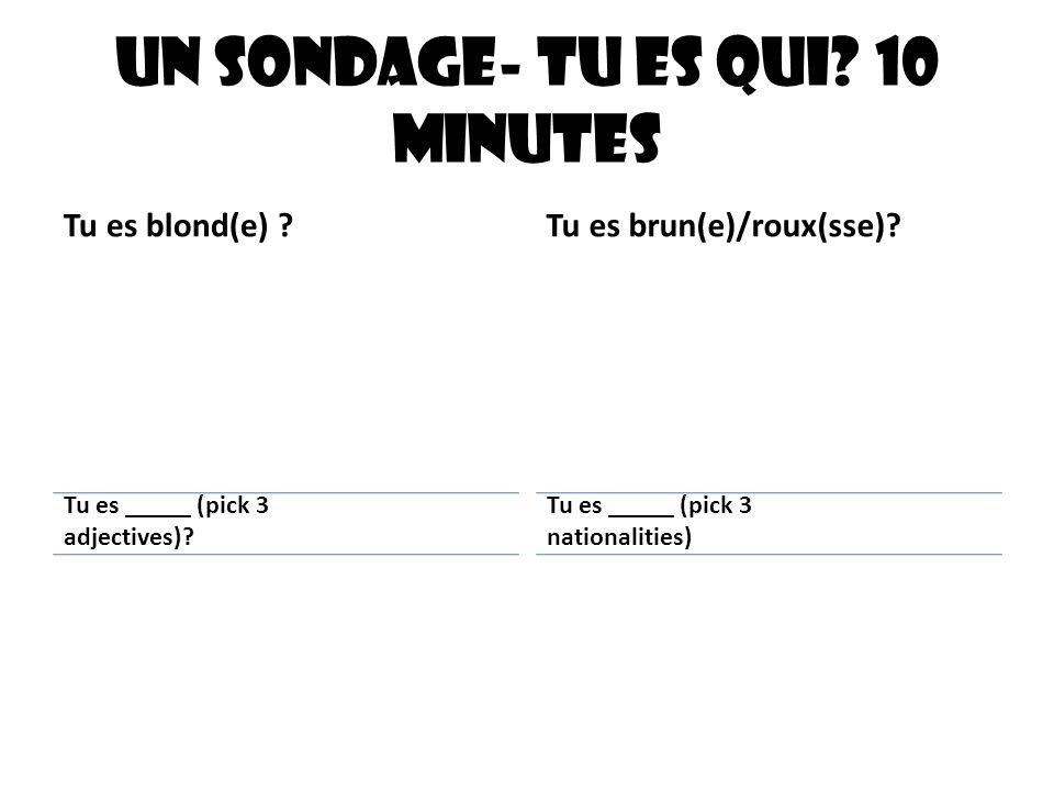 Un sondage- Tu es qui? 10 minutes Tu es blond(e) ?Tu es brun(e)/roux(sse)? Tu es _____ (pick 3 adjectives)? Tu es _____ (pick 3 nationalities)