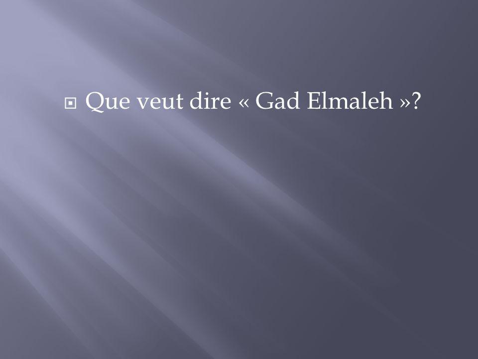 Que veut dire « Gad Elmaleh »?