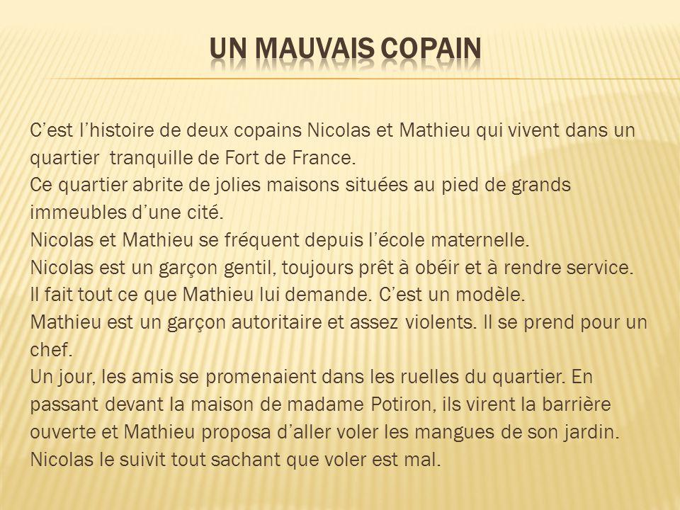 Cest lhistoire de deux copains Nicolas et Mathieu qui vivent dans un quartier tranquille de Fort de France. Ce quartier abrite de jolies maisons situé
