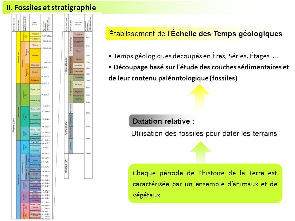 II. Fossiles et stratigraphie Chaque période de lhistoire de la Terre est caractérisée par un ensemble danimaux et de végétaux. Utilisation des fossil
