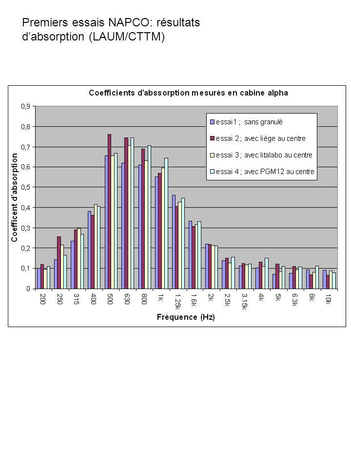 Premiers essais NAPCO: résultats dabsorption (LAUM/CTTM)