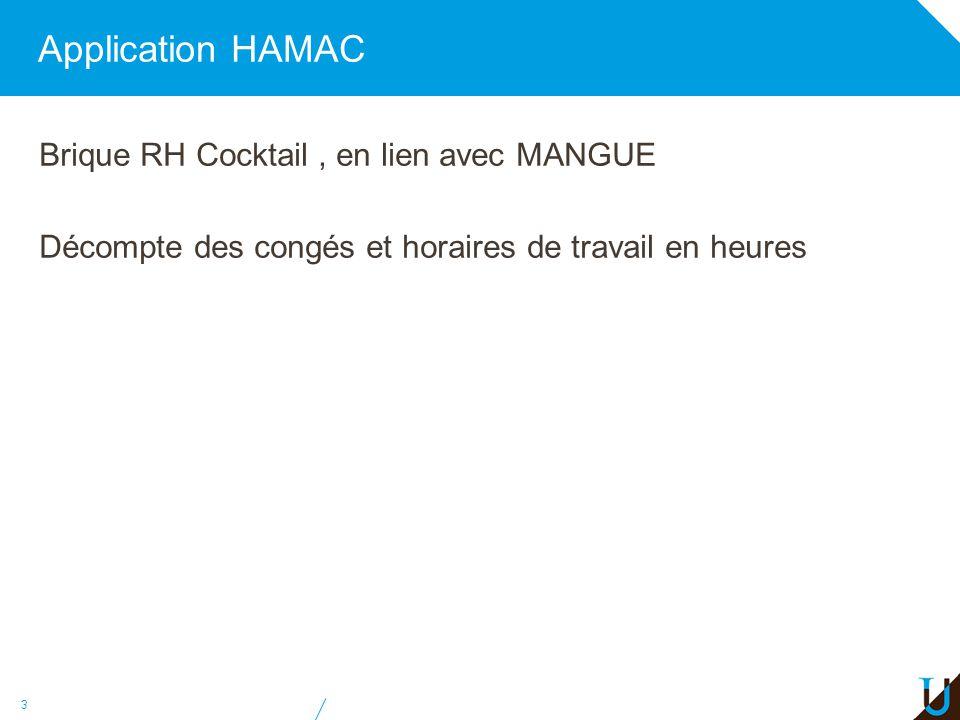 Application HAMAC Brique RH Cocktail, en lien avec MANGUE Décompte des congés et horaires de travail en heures 3