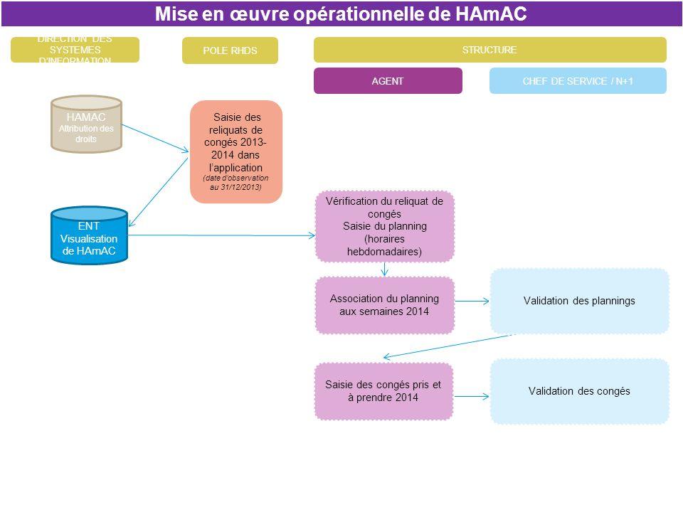 CHEF DE SERVICE / N+1AGENT Mise en œuvre opérationnelle de HAmAC DIRECTION DES SYSTEMES DINFORMATION Association du planning aux semaines 2014 ENT Vis