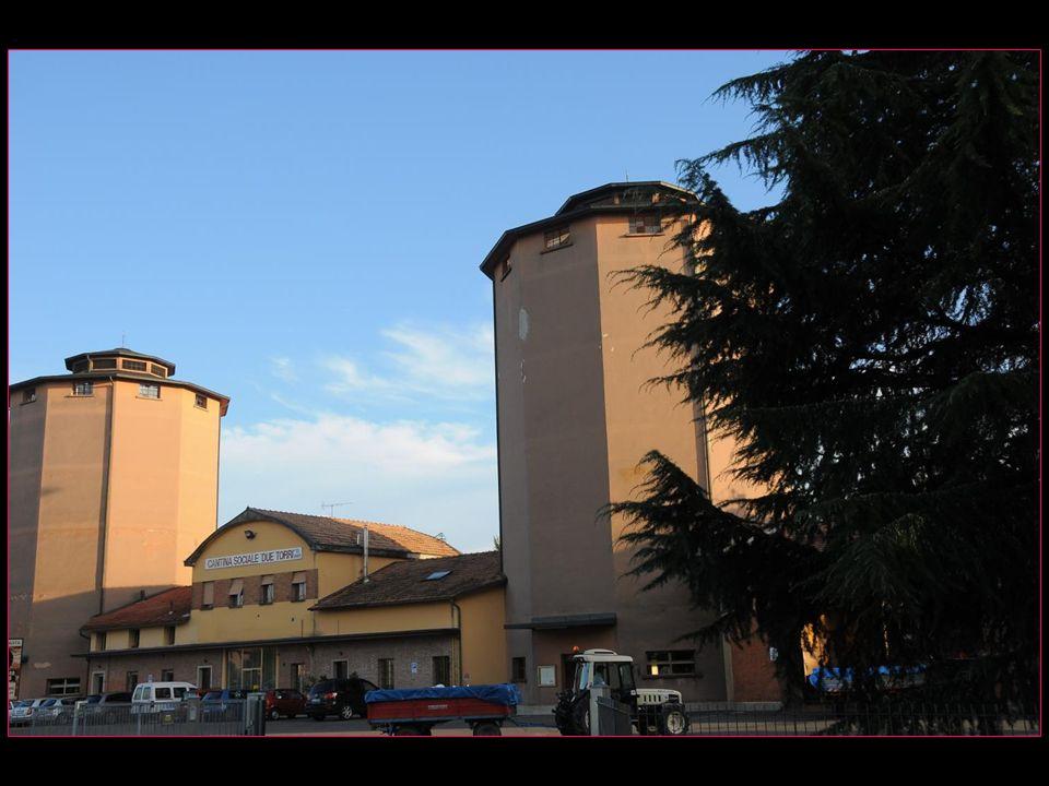 Cantina Sociale Due Torri Cave coopérative des Deux Tours en ce milieu de septembre, les viticulteurs livrent leurs récoltes de raisins