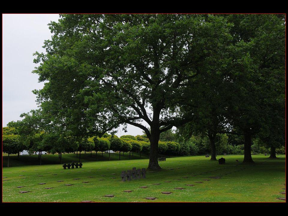 adjacent au cimetière, a été construit un Jardin de la Paix où sur 3 hectares 1200 érables ont été plantés en symbole de paix, chacun financé par un donateur de différents pays