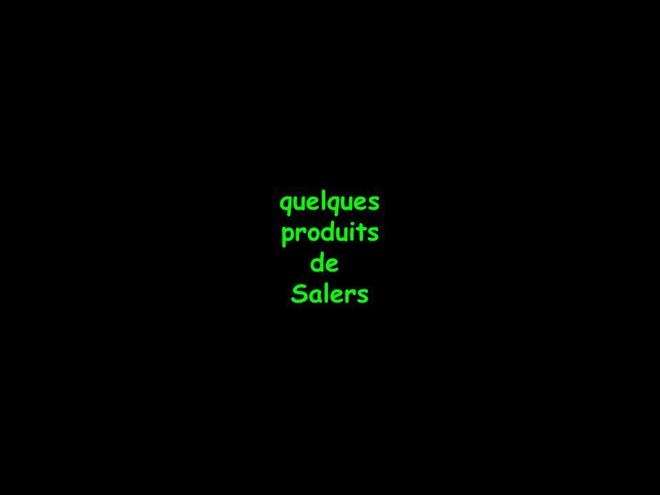 quelques produits de Salers