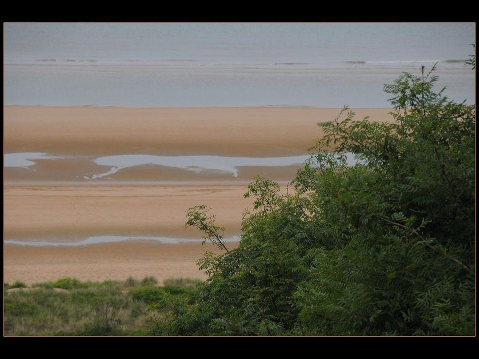 Omaga Beach est lappellation utilisée par les Alliés pour désigner lune des cinq plages du débarquement de Normandie