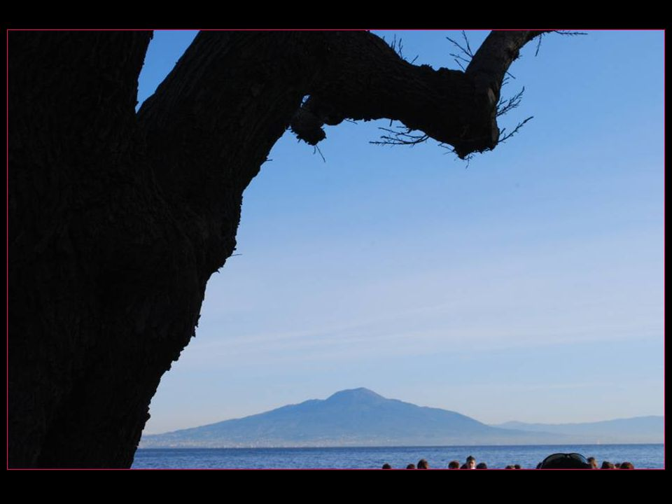 Blason de la Province de Naples