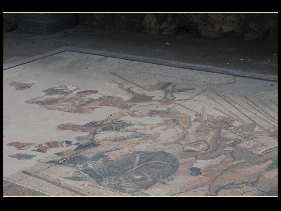 Mosaïques sur marbres au sol de lentrée