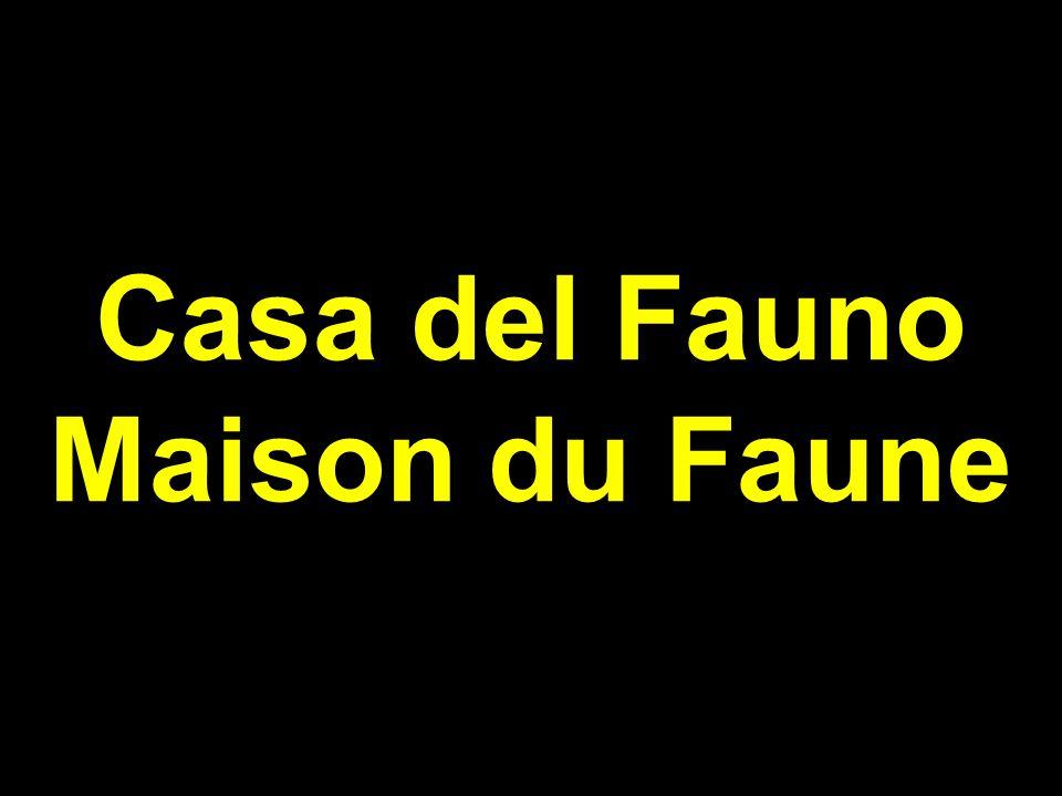 Casa del Fauno Maison du Faune