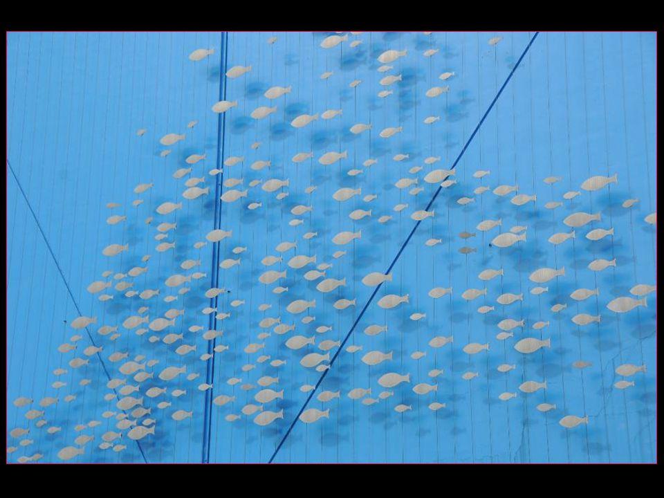Les voyages BUCHARD en Ligurie – Cinque Terre Printemps 2012 Gênes LAquarium défilement automatique