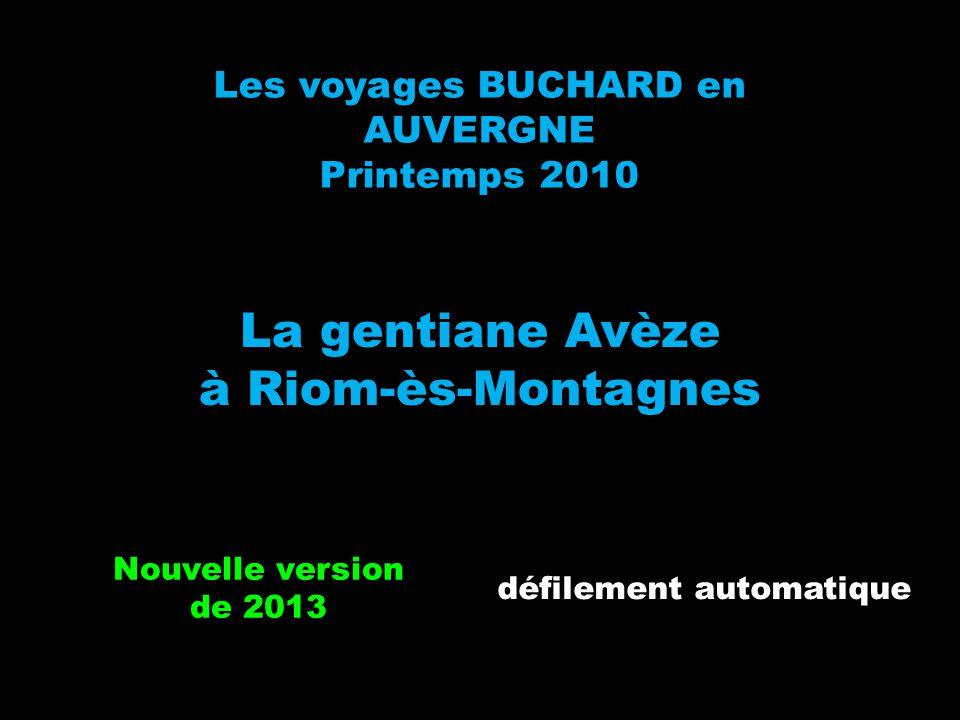Les voyages BUCHARD en AUVERGNE Printemps 2010 La gentiane Avèze à Riom-ès-Montagnes Nouvelle version de 2013 défilement automatique