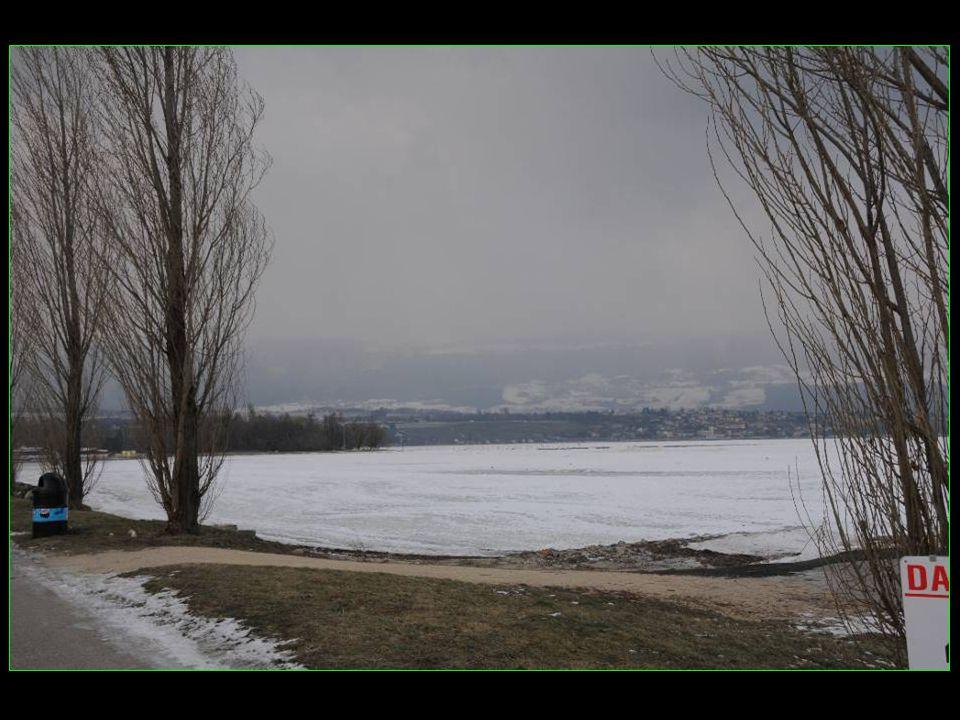Le bout du lac de Neuchâtel a formé une banquise digne de la Sibérie