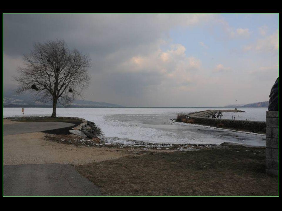 Une banquise de 200 m environ sur plusieurs km de Grandson à Yverdon plage
