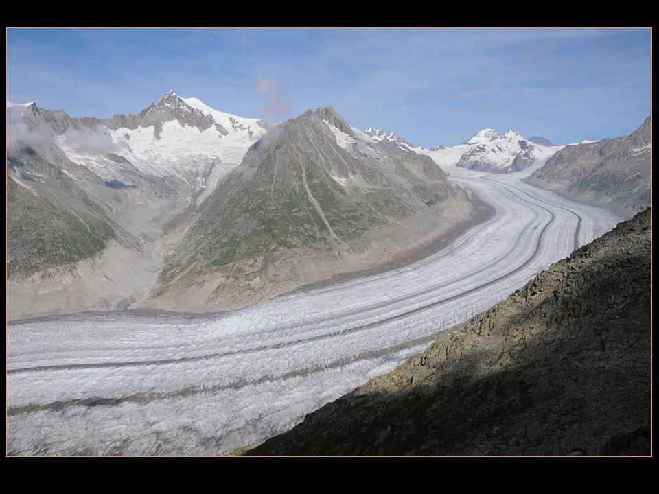 ce recul sest accéléré depuis 1980 et le glacier a reculé de 800 m en 30 ans, soit 30% du recul total