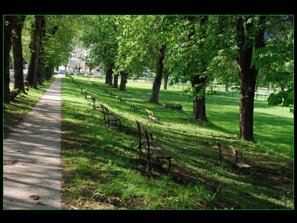 Les bancs le long de la promenade ombragée