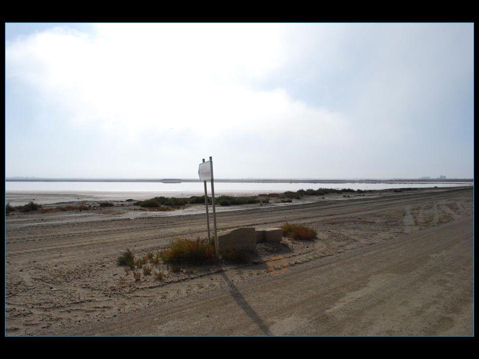plus de 340 km de routes et chemins sillonnent dans tous les sens ses 10800 hectares