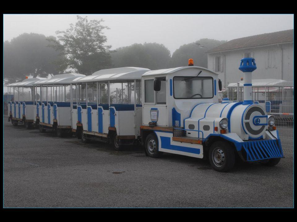 Départ en petit train pour la visite des salines, dit le Salin dAigues - Mortes