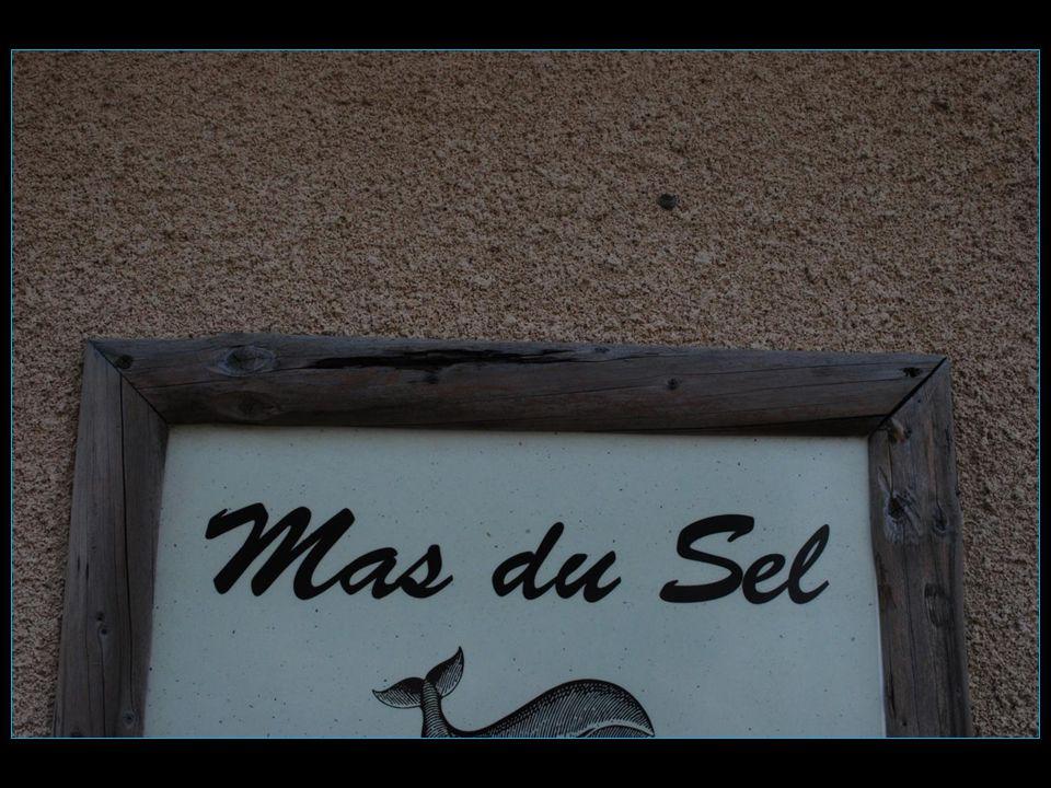 Visite au Mas du sel